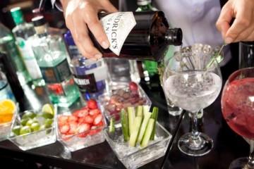 los-mejores-gin-tonics-del-momento